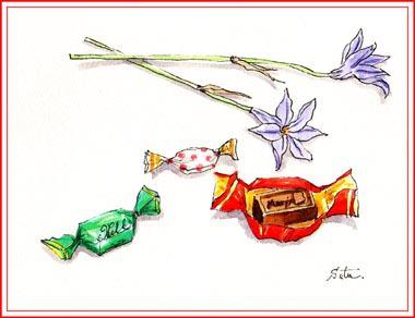 チョコとハナニラ