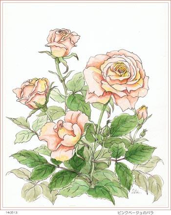 ピンクベージュ色のバラ