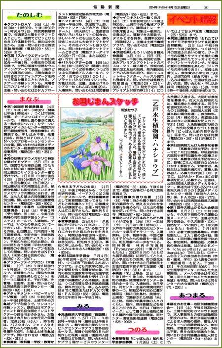 常陽新聞・ハナショウブ
