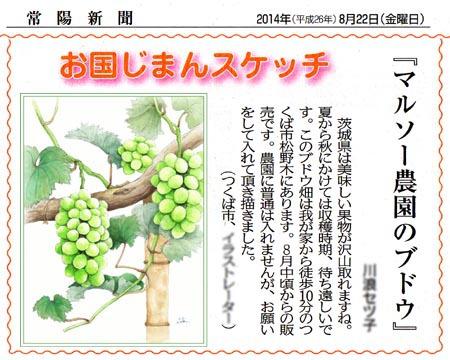 「マルソー農園」の常陽新聞