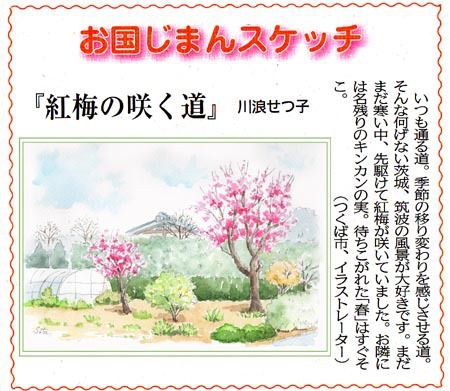 常陽新聞・紅梅の咲く道