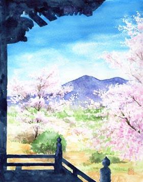 泉子育観音のお堂からの桜