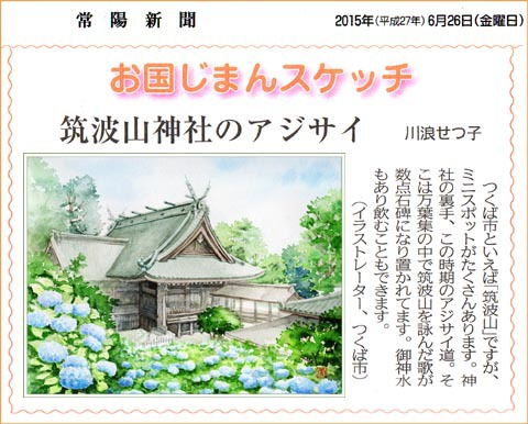 常陽新聞・筑波山神社のアジサイ