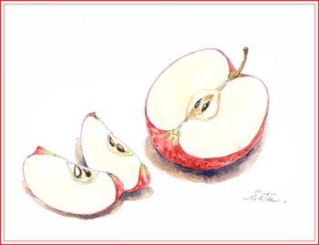 半分のリンゴ