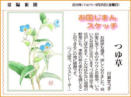 常陽新聞・つゆ草