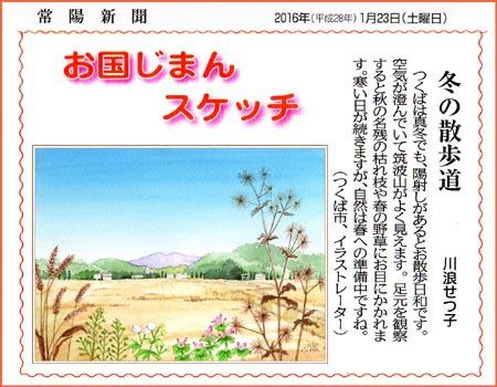 常陽新聞・冬の散歩道