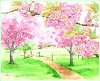高崎自然の森・八重桜
