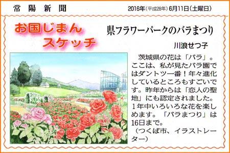 常陽新聞・茨城県フラワーパークのバラまつり