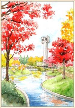 松見公園の紅葉