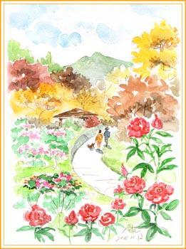 茨城県石岡フラワーパーク・秋のバラ