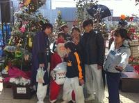 100本のクリスマスツリー