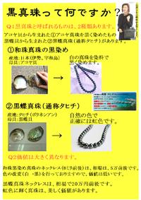 黒真珠とは。。。 2011/02/05 16:20:00