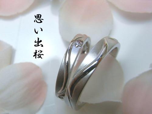 マーノの新作結婚指輪 思い出桜