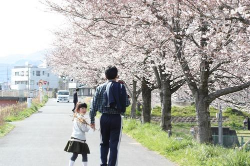 桜に和む☆