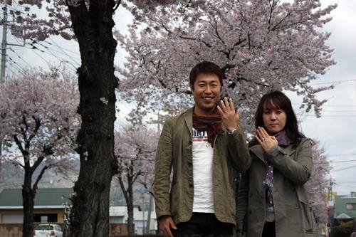 満開の桜の中で