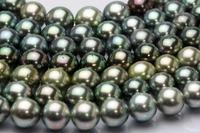 黒蝶真珠の魅力♪ 2011/10/15 13:35:07