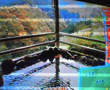 吉野千本桜がテレビにて