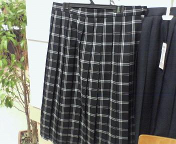 岩瀬東中学校の女子の夏制服です。