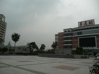 上海、皆既日食報告