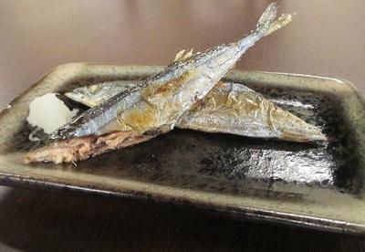 魚 さんま