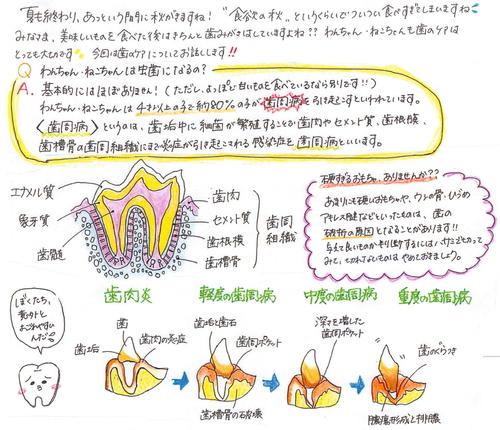 【秋号】病院新聞_1