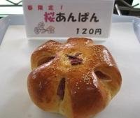 春限定♪桜あんぱん 埼玉県蕨市中央のパン屋