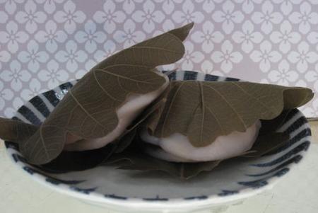 柏餅(かしわ餅)