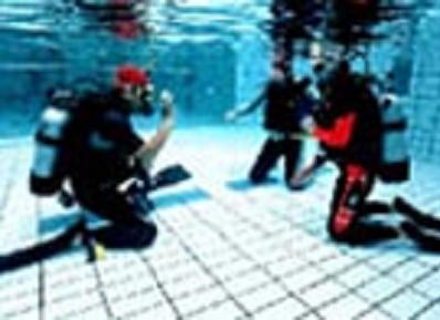 学科講習とプール実習(1日間)