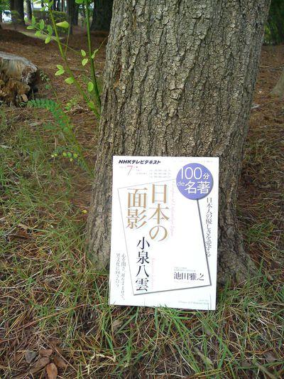 また19世紀後期にまつわる本を買ってしまった…④『小泉八雲「日本の面影」』