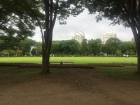 二宮公園のセブンイレブン