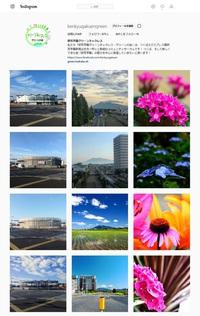 グリーンの会インスタ写真がつくば市環境白書の表紙になった!