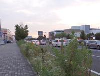 研究学園の中心幹線道路がさっぱりしていた!