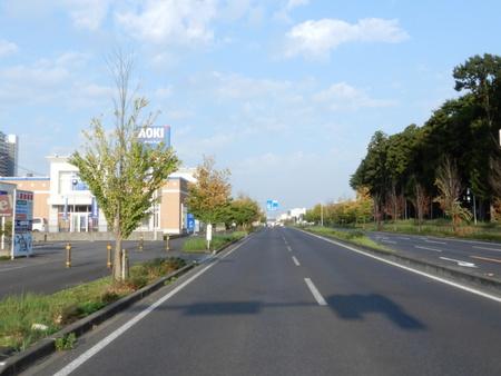 【今昔49】研究学園を貫く幹線道路、アオキ前からイーアス方面の眺め!