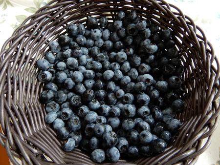ブルーベリーの糖度は??小さな粒に甘さが凝縮されています。