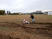 グリーンの会の畑にジャガイモを植えました!