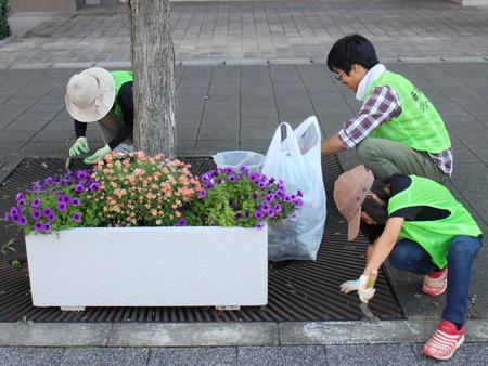 研究学園駅前に花を加え彩を追加しました!