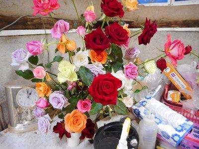バラの花と独り言