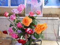 バラのプレゼント沢辺バラ園