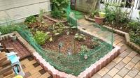 庭を広げました